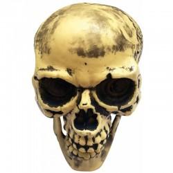 Αποκριάτικο Αξεσουάρ Halloween νεκροκεφαλή 20x25cm
