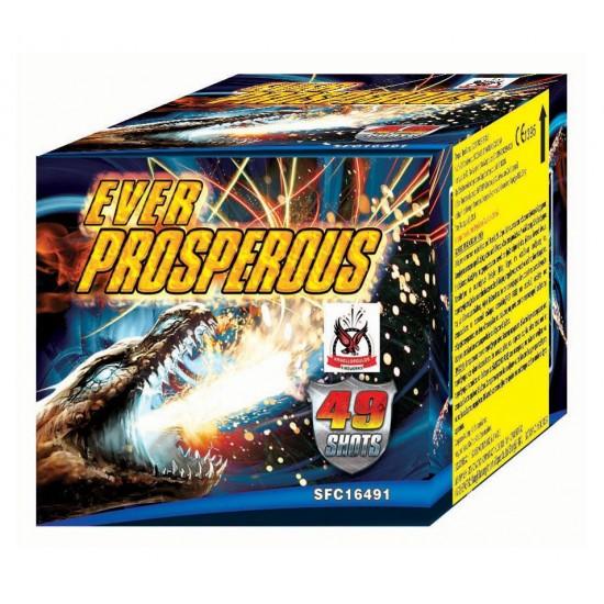 Πυροτέχνημα Ever Prosperous 49 βολές